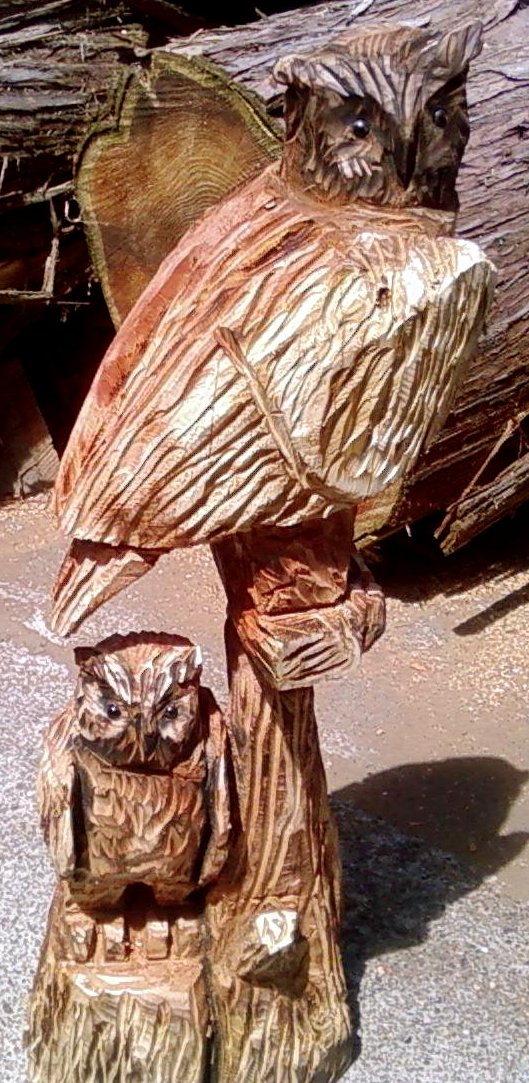 2011-06-23-Owls-Chainsaw-Carving-Two-Owls-2.jpg