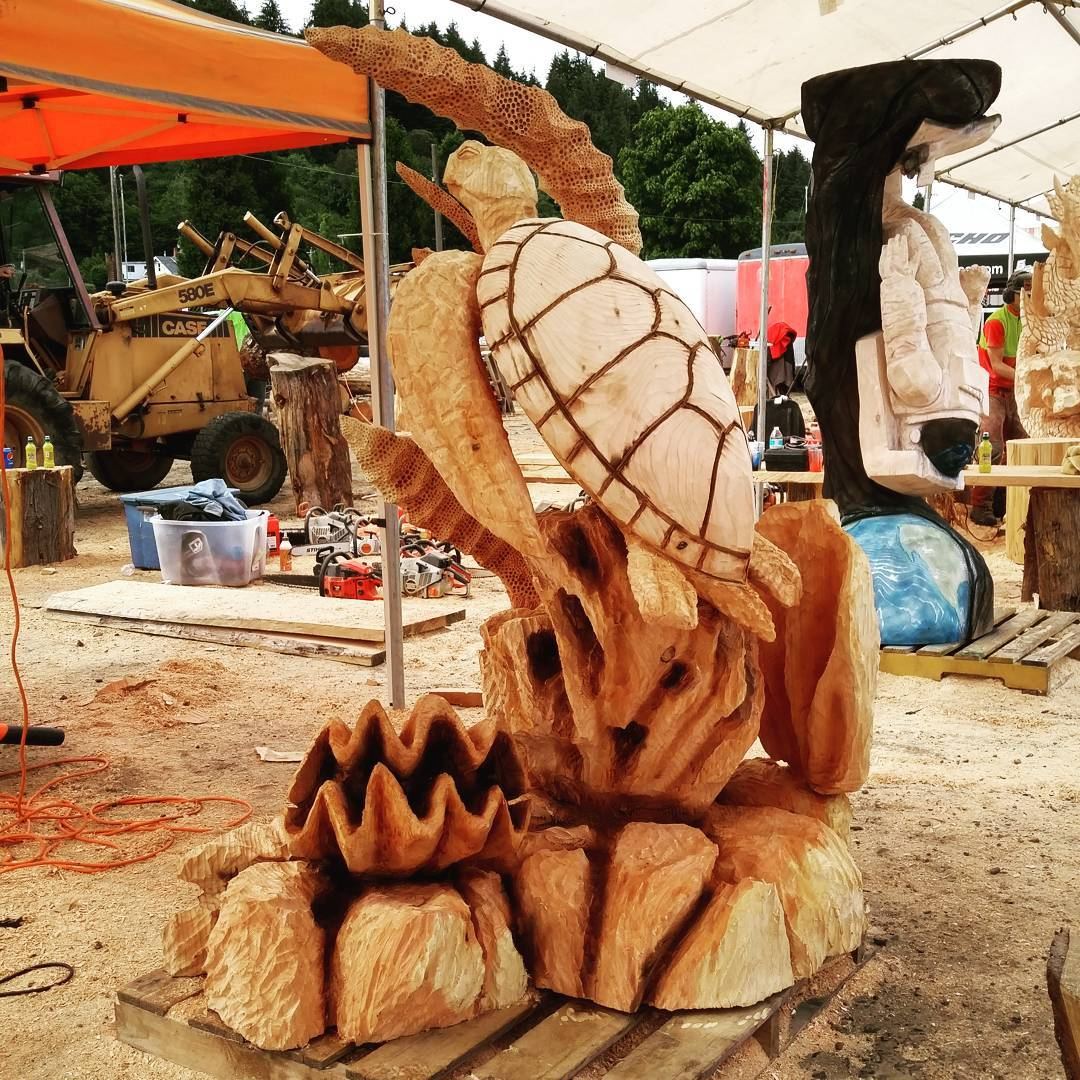 2016-06-19-ReedsportTurtle-2016-Reedsport-Chainsaw-Carving-Turtle.jpg